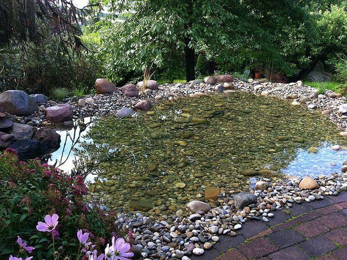 Teiche und biotope kandler garten landschaftsbau for Garten randgestaltung